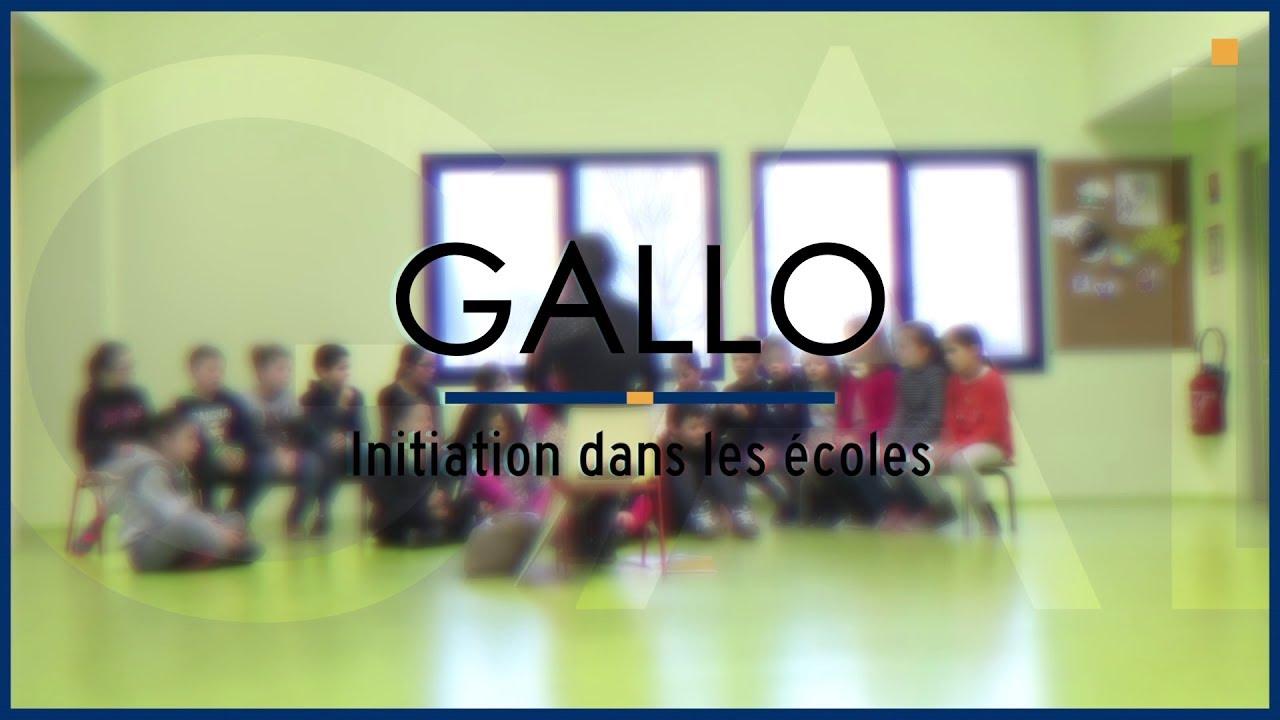 Gallo : initiation dans les écoles